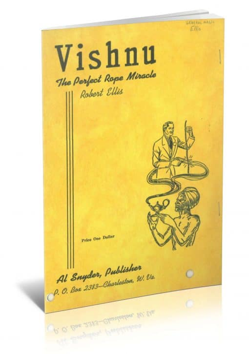 Vishnu PDF