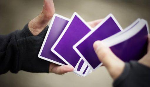NOC v3 - Purple